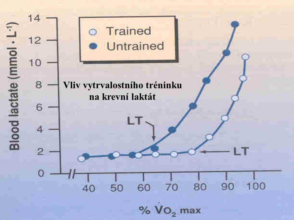 Vliv vytrvalostního tréninku na krevní laktát