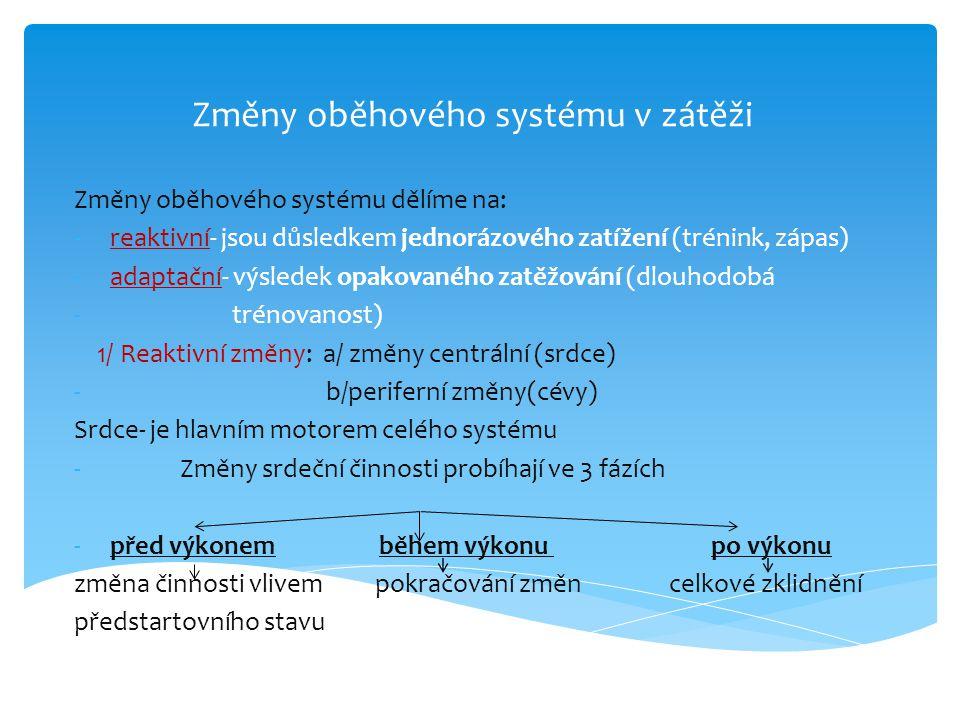 Změny oběhového systému v zátěži Změny oběhového systému dělíme na: -reaktivní- jsou důsledkem jednorázového zatížení (trénink, zápas) -adaptační- výs