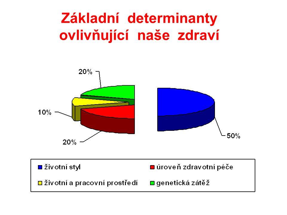 Základní determinanty ovlivňující naše zdraví