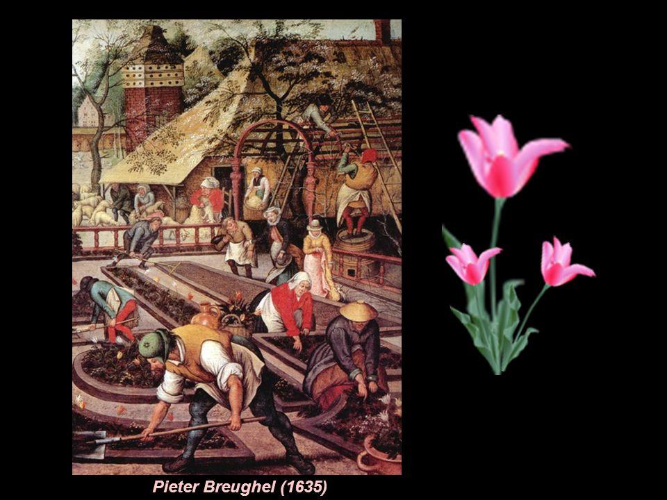 Pieter Breughel (1635)
