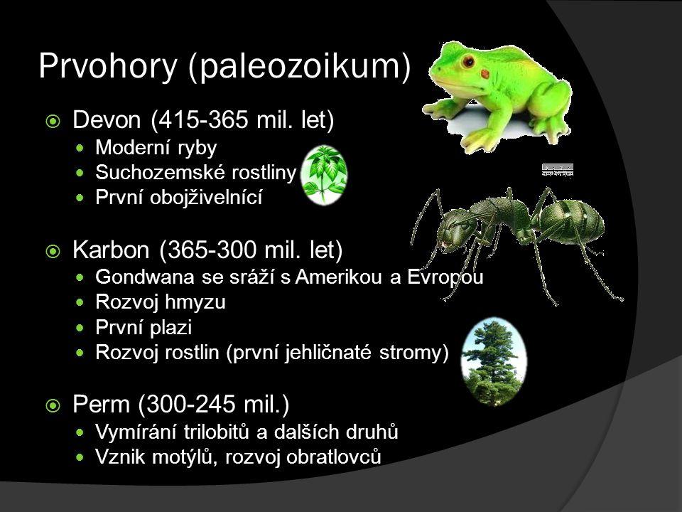 Prvohory (paleozoikum)  Devon (415-365 mil. let) Moderní ryby Suchozemské rostliny První obojživelnící  Karbon (365-300 mil. let) Gondwana se sráží
