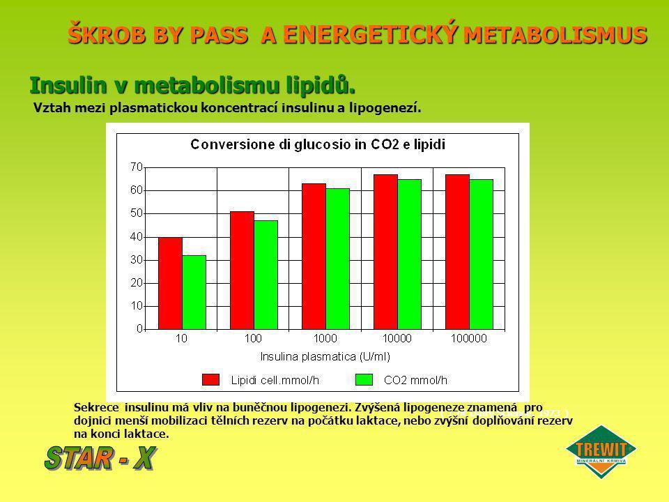 ŠKROB BY PASS A ENERGETICKÝ METABOLISMUS Insulin v metabolismu lipidů. Vztah mezi plasmatickou koncentrací insulinu a lipogenezí. ( J. of Dairy Scienc