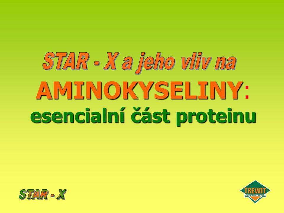 AMINOKYSELINY esencialní část proteinu AMINOKYSELINY: esencialní část proteinu