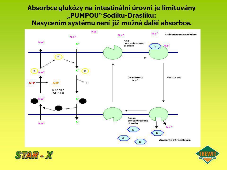 """Absorbce glukózy na intestinální úrovni je limitovány """"PUMPOU"""" Sodíku-Draslíku: Nasycením systému není již možná další absorbce."""