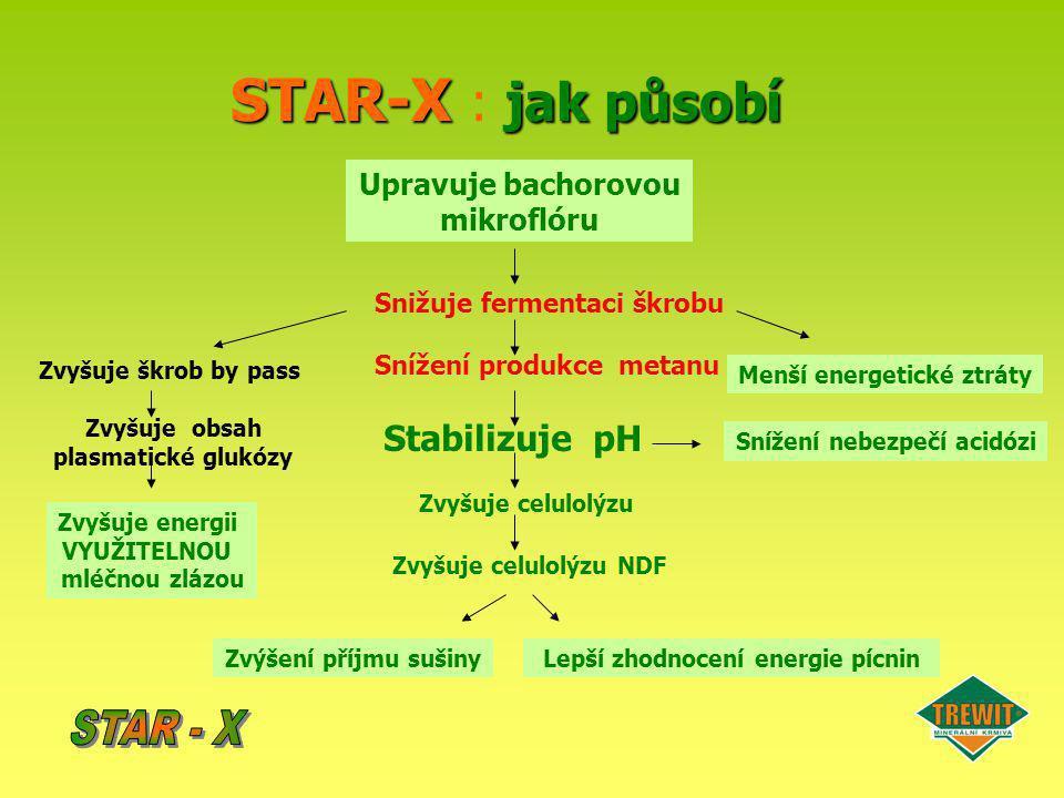 STAR-X jak působí STAR-X : jak působí Upravuje bachorovou mikroflóru Snižuje fermentaci škrobu Snížení produkce metanu Menší energetické ztráty Zvyšuj
