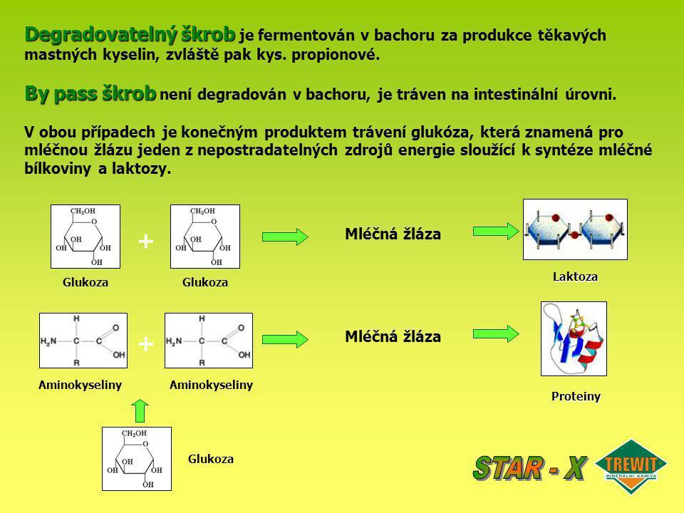 Degradovatelný škrob Degradovatelný škrob je fermentován v bachoru za produkce těkavých mastných kyselin, zvláště pak kys. propionové. By pass škrob B