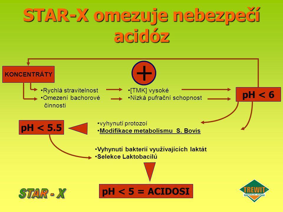 STAR-X omezuje nebezpečí acidóz KONCENTRÁTY Rychlá stravitelnost Omezení bachorové činnosti [TMK] vysoké Nízká pufrační schopnost pH < 6 vyhynutí prot