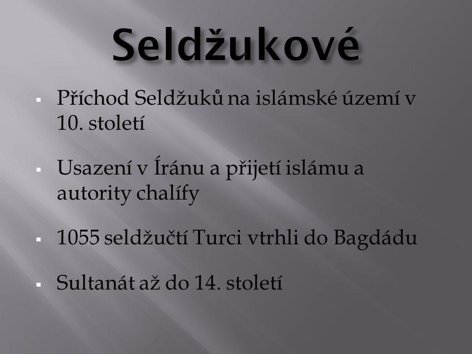  Příchod Seldžuků na islámské území v 10.