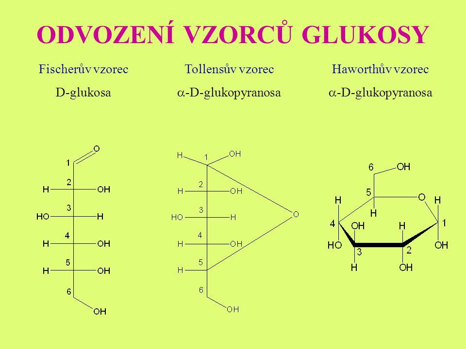 ODVOZENÍ VZORCŮ GLUKOSY Fischerův vzorec D-glukosa Tollensův vzorec  -D-glukopyranosa Haworthův vzorec  -D-glukopyranosa