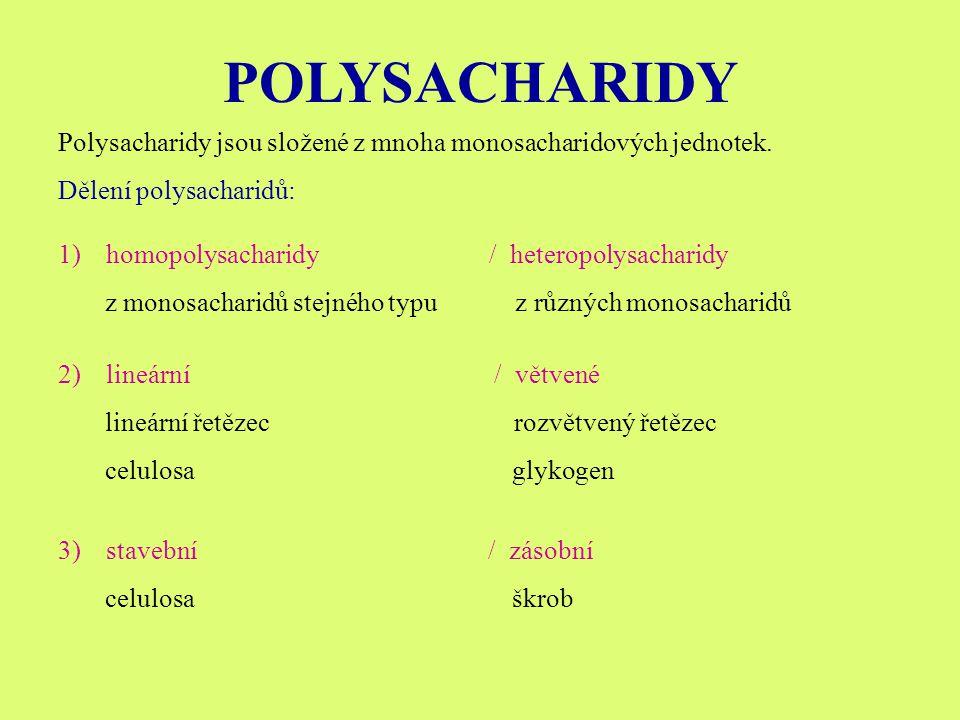 POLYSACHARIDY Polysacharidy jsou složené z mnoha monosacharidových jednotek.