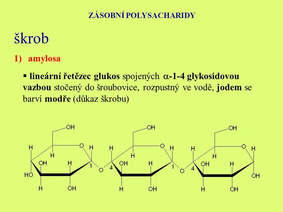 ZÁSOBNÍ POLYSACHARIDY škrob 1)amylosa  lineární řetězec glukos spojených  -1-4 glykosidovou vazbou stočený do šroubovice, rozpustný ve vodě, jodem se barví modře (důkaz škrobu)