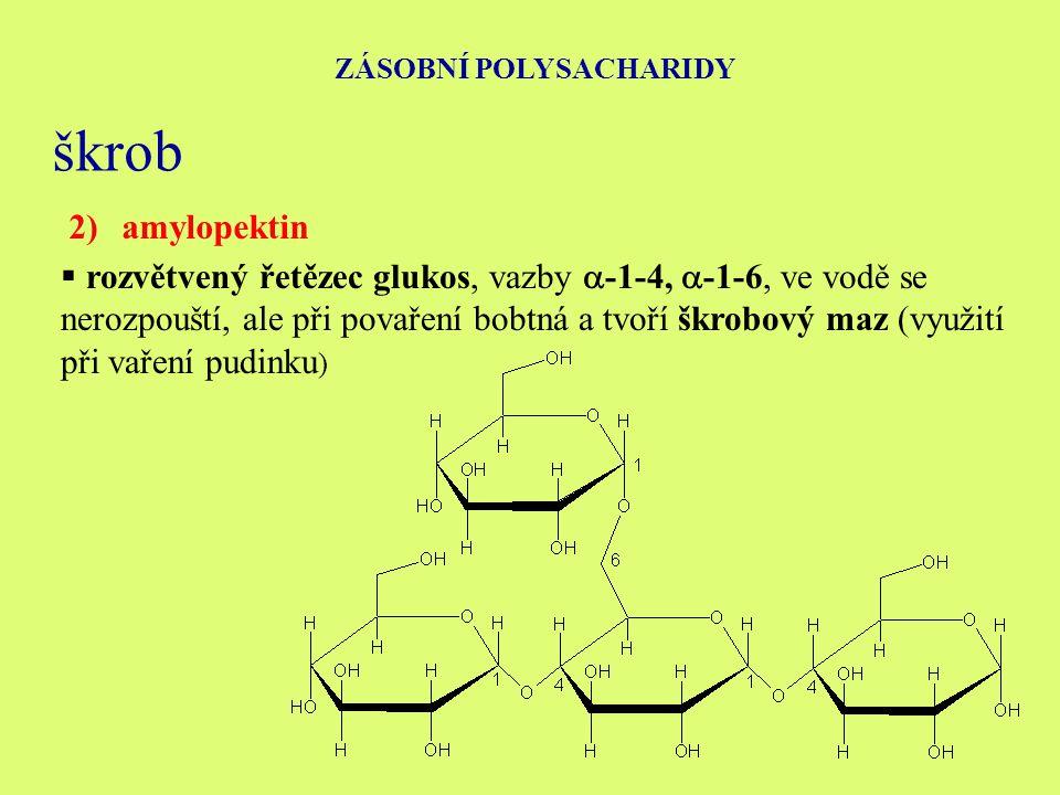 ZÁSOBNÍ POLYSACHARIDY škrob 2)amylopektin  rozvětvený řetězec glukos, vazby  -1-4,  -1-6, ve vodě se nerozpouští, ale při povaření bobtná a tvoří škrobový maz (využití při vaření pudinku )