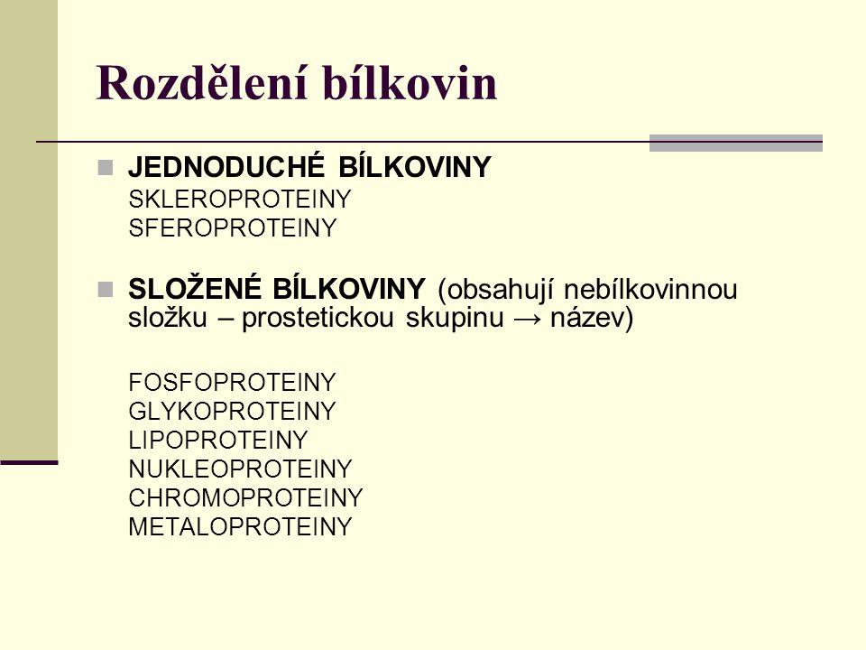 Rozdělení bílkovin JEDNODUCHÉ BÍLKOVINY SKLEROPROTEINY SFEROPROTEINY SLOŽENÉ BÍLKOVINY (obsahují nebílkovinnou složku – prostetickou skupinu → název)