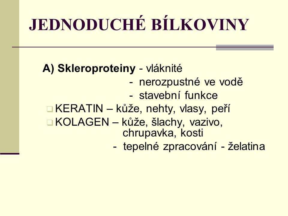 JEDNODUCHÉ BÍLKOVINY A) Skleroproteiny - vláknité - nerozpustné ve vodě - stavební funkce  KERATIN – kůže, nehty, vlasy, peří  KOLAGEN – kůže, šlach