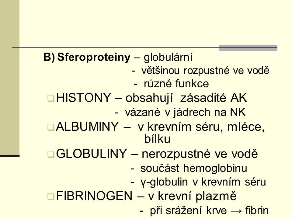 B) Sferoproteiny – globulární - většinou rozpustné ve vodě - různé funkce  HISTONY – obsahují zásadité AK - vázané v jádrech na NK  ALBUMINY – v kre