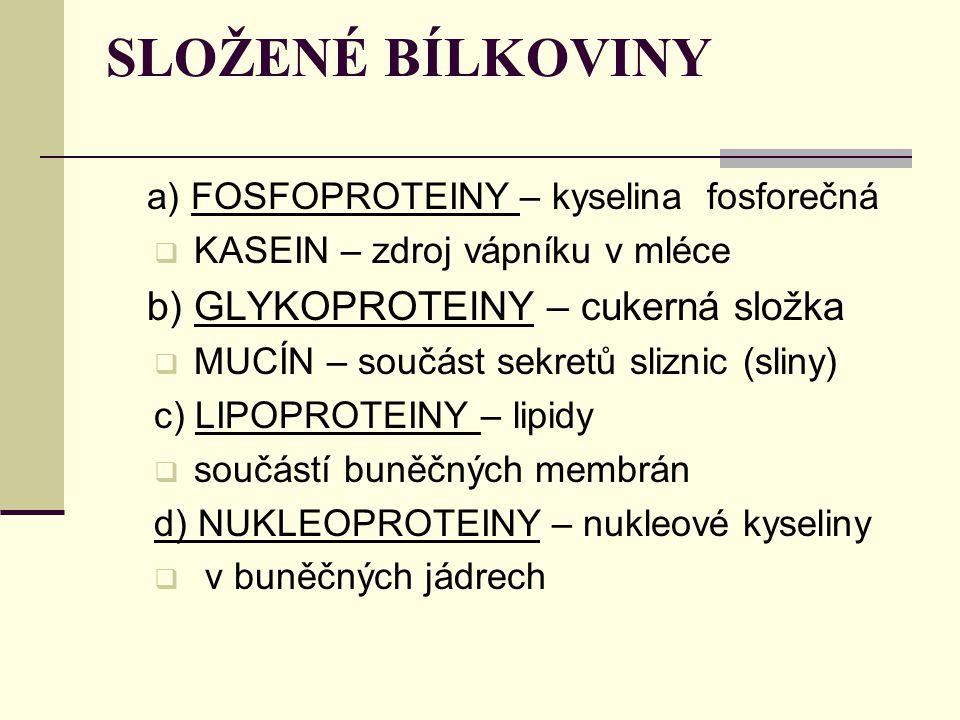 SLOŽENÉ BÍLKOVINY a) FOSFOPROTEINY – kyselina fosforečná  KASEIN – zdroj vápníku v mléce b) GLYKOPROTEINY – cukerná složka  MUCÍN – součást sekretů