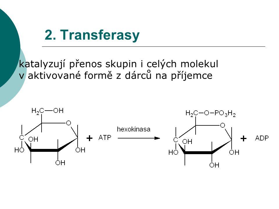 2. Transferasy  katalyzují přenos skupin i celých molekul v aktivované formě z dárců na příjemce