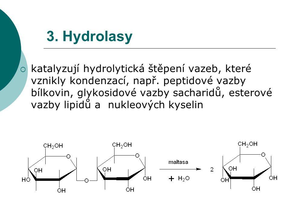 3. Hydrolasy  katalyzují hydrolytická štěpení vazeb, které vznikly kondenzací, např. peptidové vazby bílkovin, glykosidové vazby sacharidů, esterové