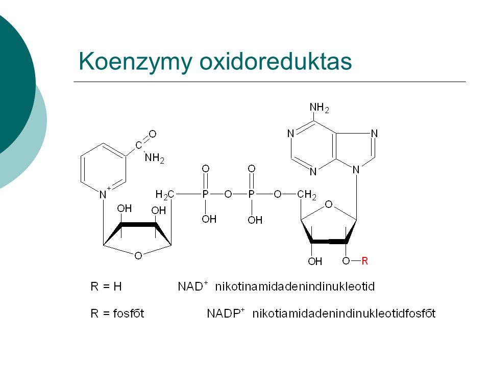 Koenzymy oxidoreduktas