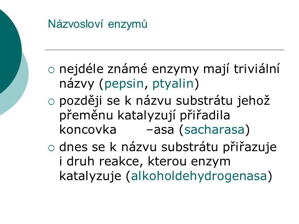 Názvosloví enzymů  nejdéle známé enzymy mají triviální názvy (pepsin, ptyalin)  později se k názvu substrátu jehož přeměnu katalyzují přiřadila konc