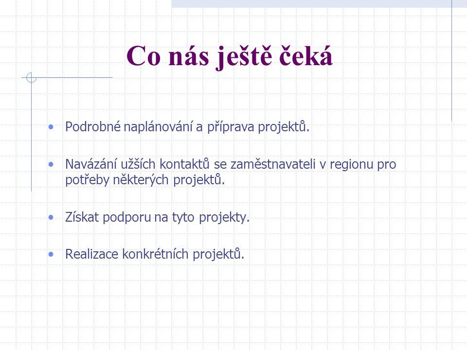 Co nás ještě čeká Podrobné naplánování a příprava projektů.