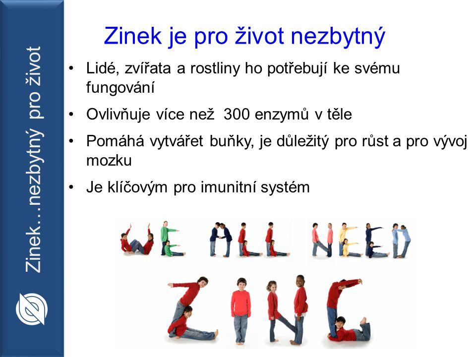 Zinek…nezbytný pro život Nedostatek zinku je globálním problémem Jeden člověk ze tří je v ohrožení života kvůli nedostatku zinku.