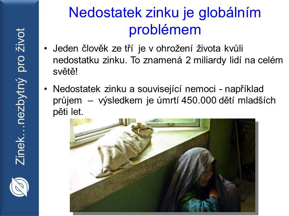 Zinek…nezbytný pro život Zachránit 200 000 životů za rok Celkově vylepšit zdraví, růst a vývoj dětí Cíle do roku 2013