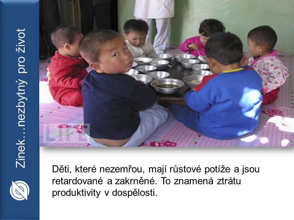 Zinek…nezbytný pro život Děti, které nezemřou, mají růstové potíže a jsou retardované a zakrněné.