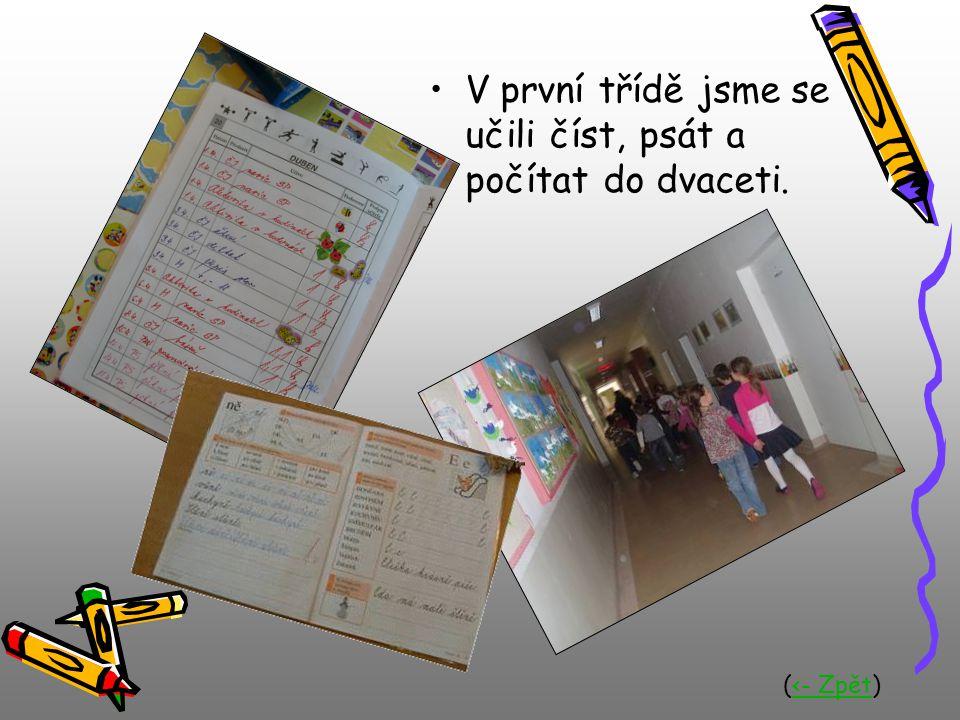 V první třídě jsme se učili číst, psát a počítat do dvaceti. (<- Zpět)<- Zpět