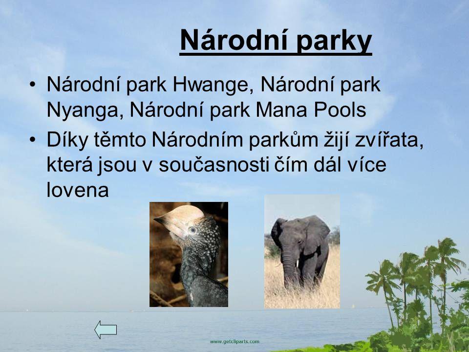 Národní parky Národní park Hwange, Národní park Nyanga, Národní park Mana Pools Díky těmto Národním parkům žijí zvířata, která jsou v současnosti čím
