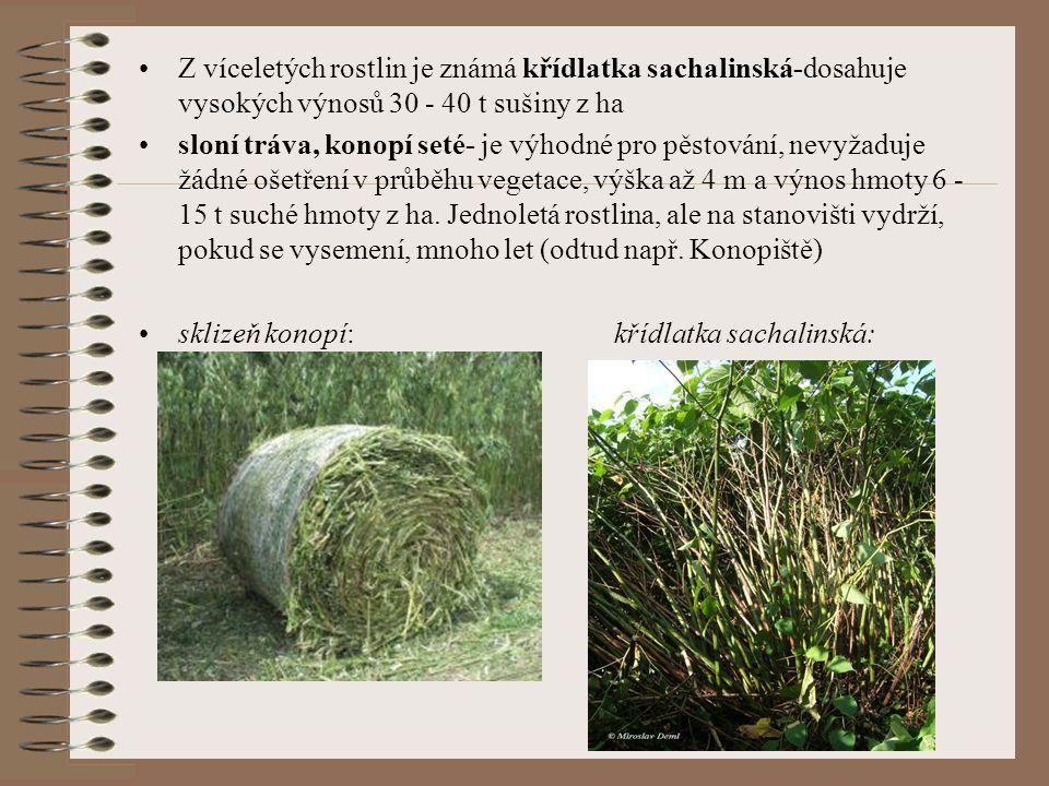 Z víceletých rostlin je známá křídlatka sachalinská-dosahuje vysokých výnosů 30 - 40 t sušiny z ha sloní tráva, konopí seté- je výhodné pro pěstování,