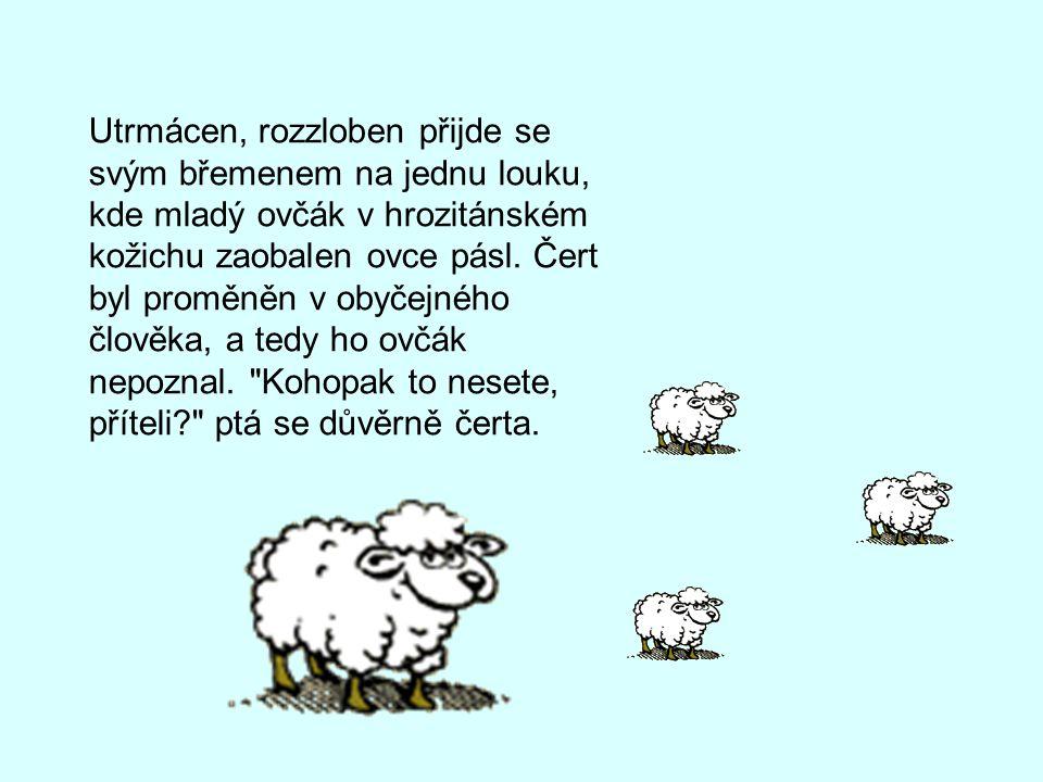 Utrmácen, rozzloben přijde se svým břemenem na jednu louku, kde mladý ovčák v hrozitánském kožichu zaobalen ovce pásl.
