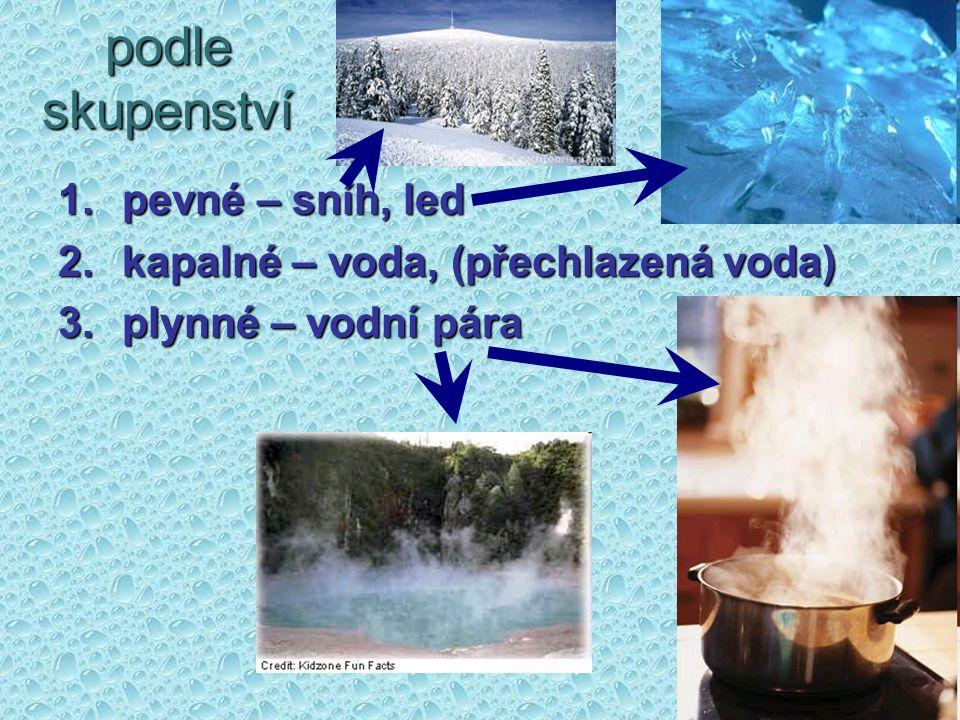 podle skupenství 1.pevné – sníh, led 2.kapalné – voda, (přechlazená voda) 3.plynné – vodní pára