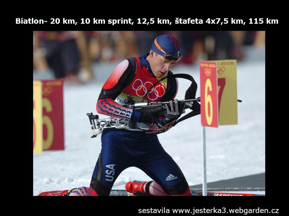 Biatlon- 20 km, 10 km sprint, 12,5 km, štafeta 4x7,5 km, 115 km sestavila www.jesterka3.webgarden.cz
