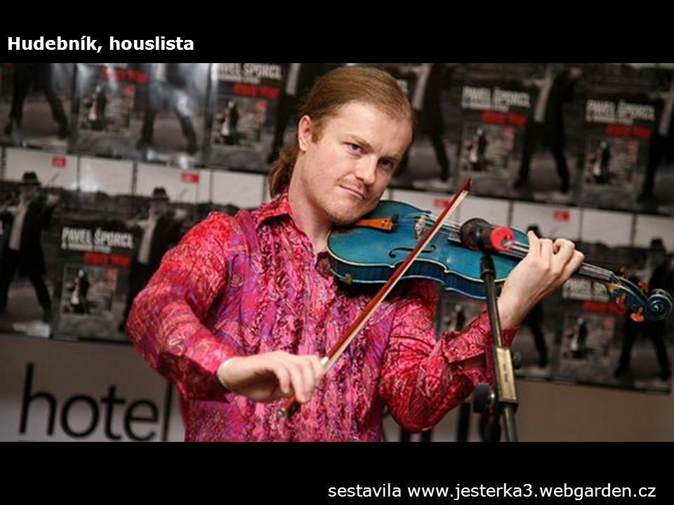 Hudebník, houslista sestavila www.jesterka3.webgarden.cz