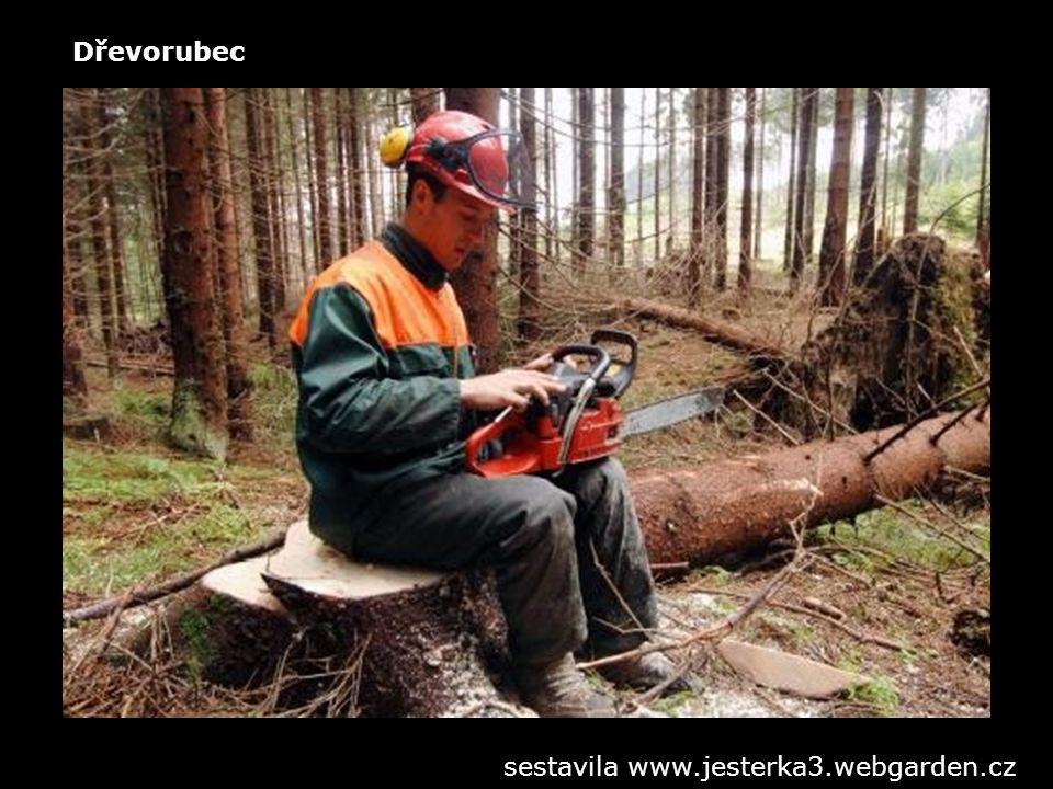 Řezník sestavila www.jesterka3.webgarden.cz