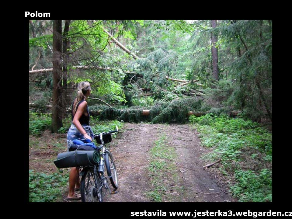 Polom sestavila www.jesterka3.webgarden.cz