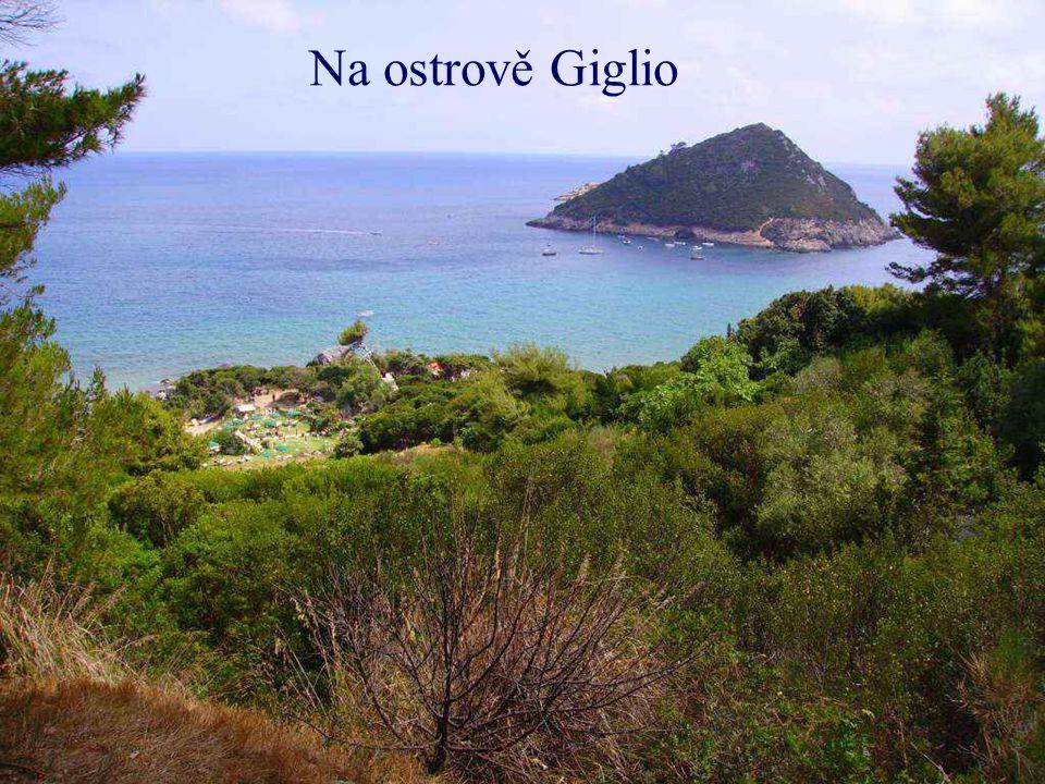 Turistický ostrov Giglio (letecký pohled)