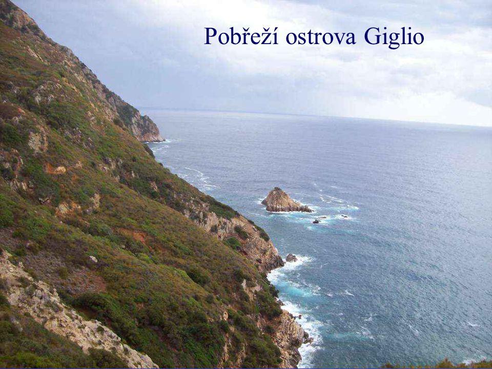 Na ostrově Giglio