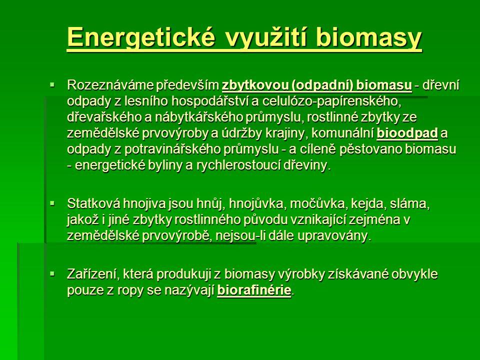 Energetické využití biomasy  Rozeznáváme především zbytkovou (odpadní) biomasu - dřevní odpady z lesního hospodářství a celulózo-papírenského, dřevař