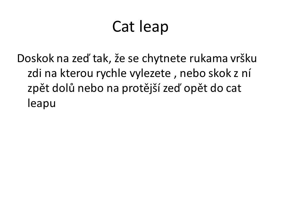 Cat leap Doskok na zeď tak, že se chytnete rukama vršku zdi na kterou rychle vylezete, nebo skok z ní zpět dolů nebo na protější zeď opět do cat leapu
