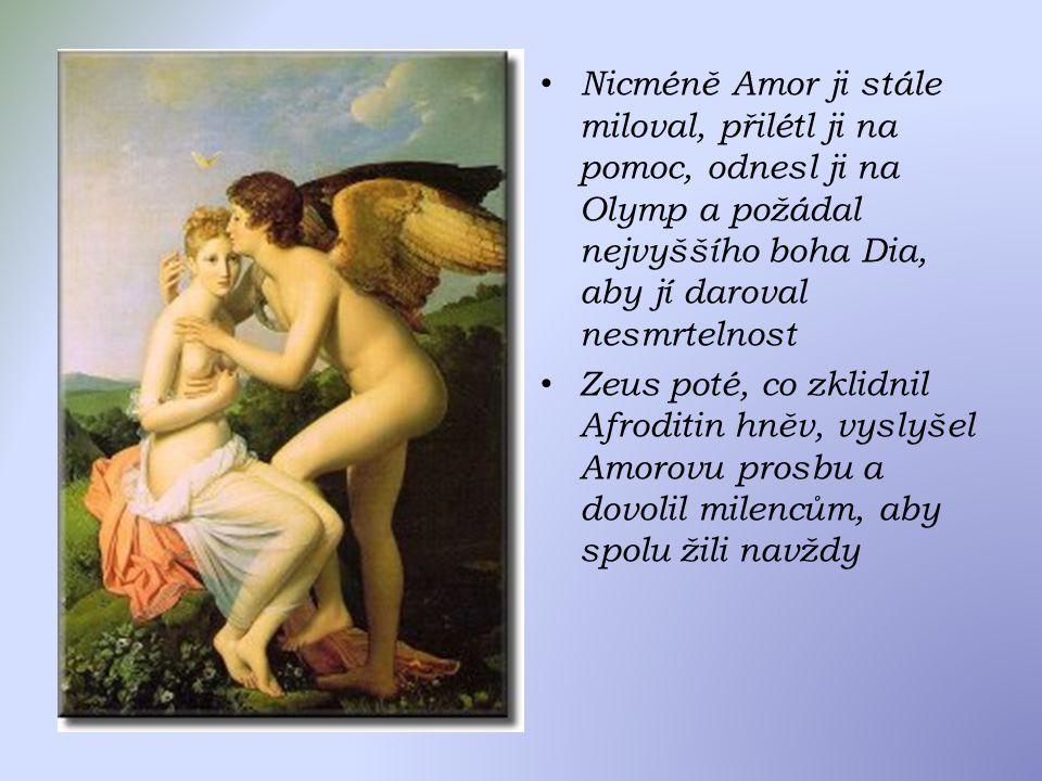 Nicméně Amor ji stále miloval, přilétl ji na pomoc, odnesl ji na Olymp a požádal nejvyššího boha Dia, aby jí daroval nesmrtelnost Zeus poté, co zklidnil Afroditin hněv, vyslyšel Amorovu prosbu a dovolil milencům, aby spolu žili navždy