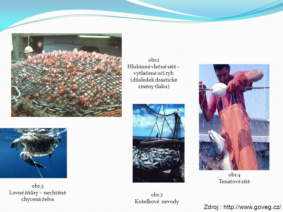 obr.2 Košelkové nevody obr.4 Tenatové sítě obr.3 Lovné šňůry – nechtěně chycená želva obr.1 Hlubinné vlečné sítě – vytlačené oči ryb (důsledek drastic