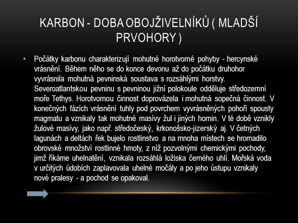 KARBON - DOBA OBOJŽIVELNÍKŮ ( MLADŠÍ PRVOHORY ) Počátky karbonu charakterizují mohutné horotvorné pohyby - hercynské vrásnění. Během něho se do konce