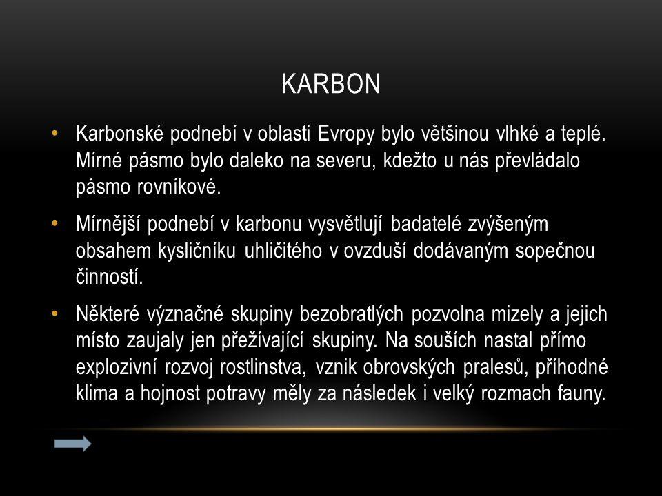 KARBON Karbonské podnebí v oblasti Evropy bylo většinou vlhké a teplé. Mírné pásmo bylo daleko na severu, kdežto u nás převládalo pásmo rovníkové. Mír