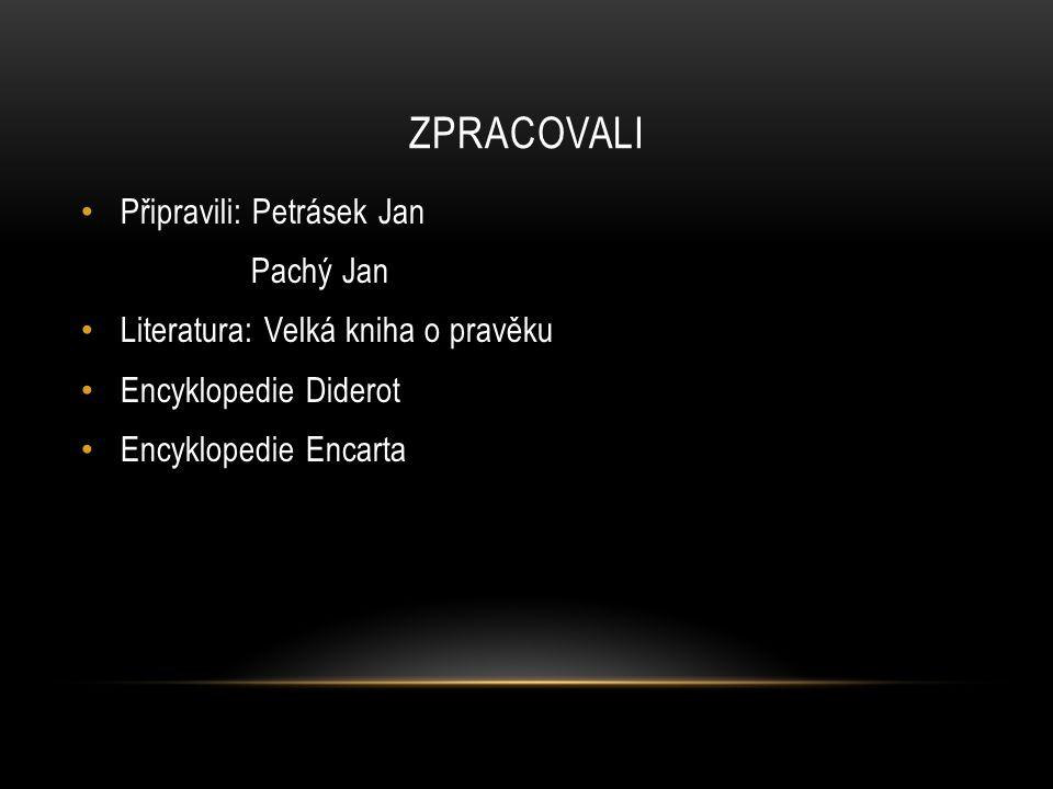 ZPRACOVALI Připravili: Petrásek Jan Pachý Jan Literatura: Velká kniha o pravěku Encyklopedie Diderot Encyklopedie Encarta