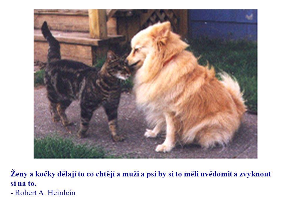 Důvodem proč pes má tolik přátel je to, že vrtí ocasem a ne jazykem. - Anonym