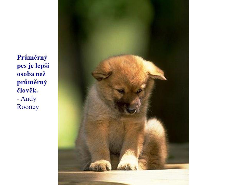 Cílem mého života je stát se tak dobrým člověkem jak si můj pes myslí že jsem.