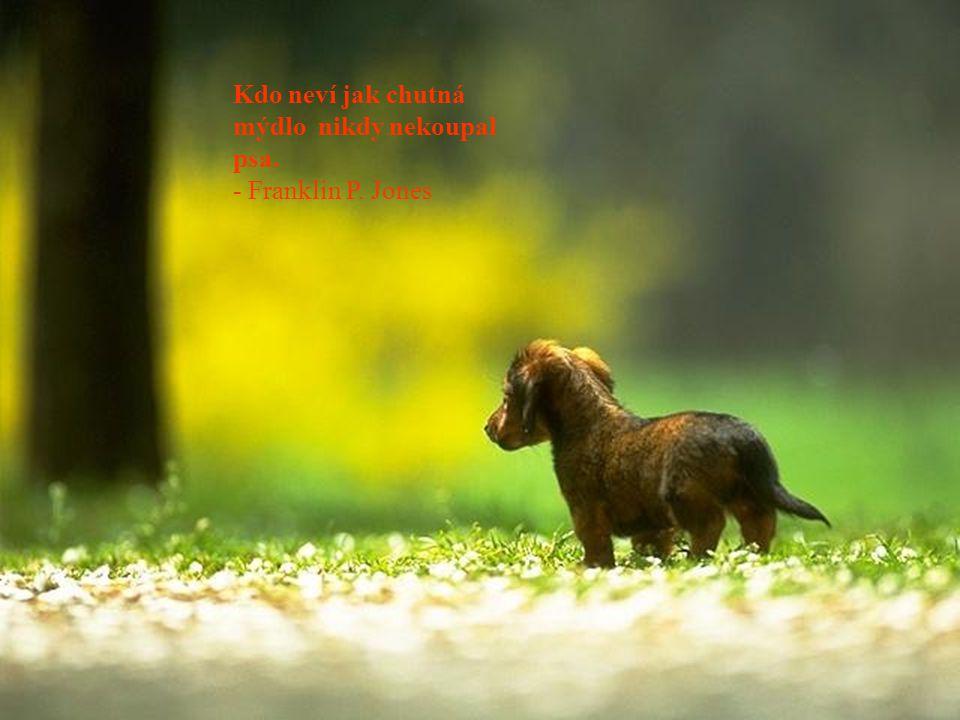 Kdo neví jak chutná mýdlo nikdy nekoupal psa. - Franklin P. Jones