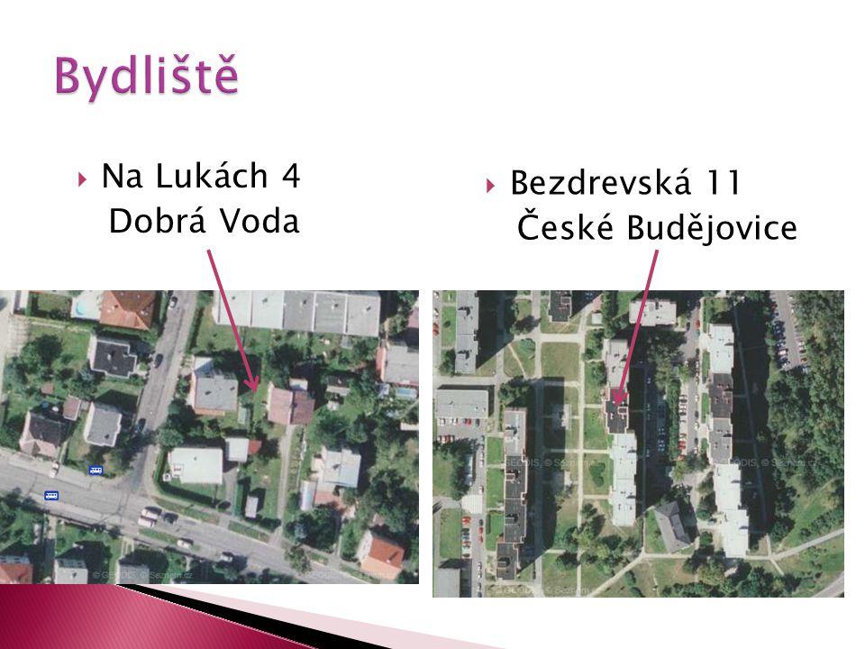  Na Lukách 4 Dobrá Voda  Bezdrevská 11 České Budějovice